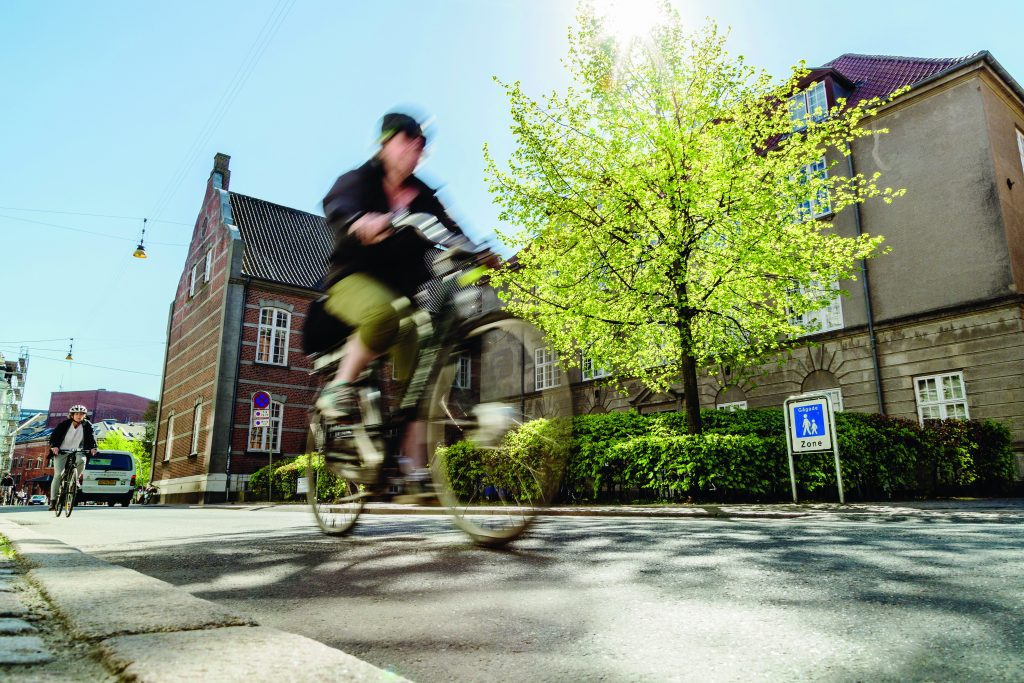 Book a lecture on cycling in Denmark with Cycling Embassy of Denmark